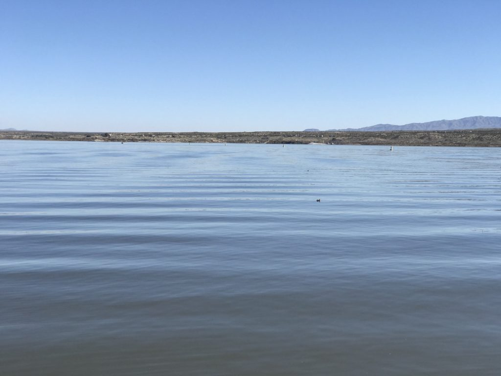 view of alamo lake's expansive waters