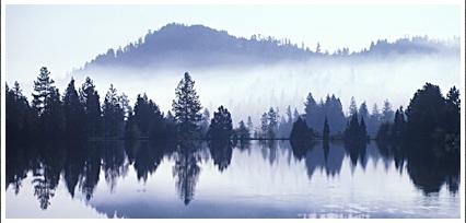 gorgeous foggy shore line of canyon lake az