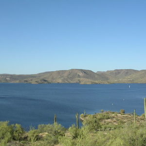 a view of lake pleasant featuring a saguaro cactus studded shoreline